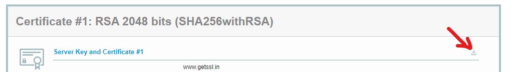 qualys ssl labs server test download certificate